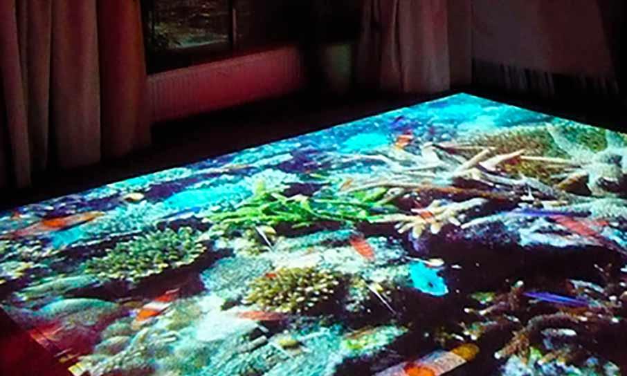 Interaktivní podlaha rybičky